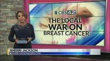 Local War on Breast Cancer: Special Report