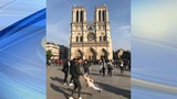 'Help him find this:' Tourist's Notre Dame photo captures sweet moment